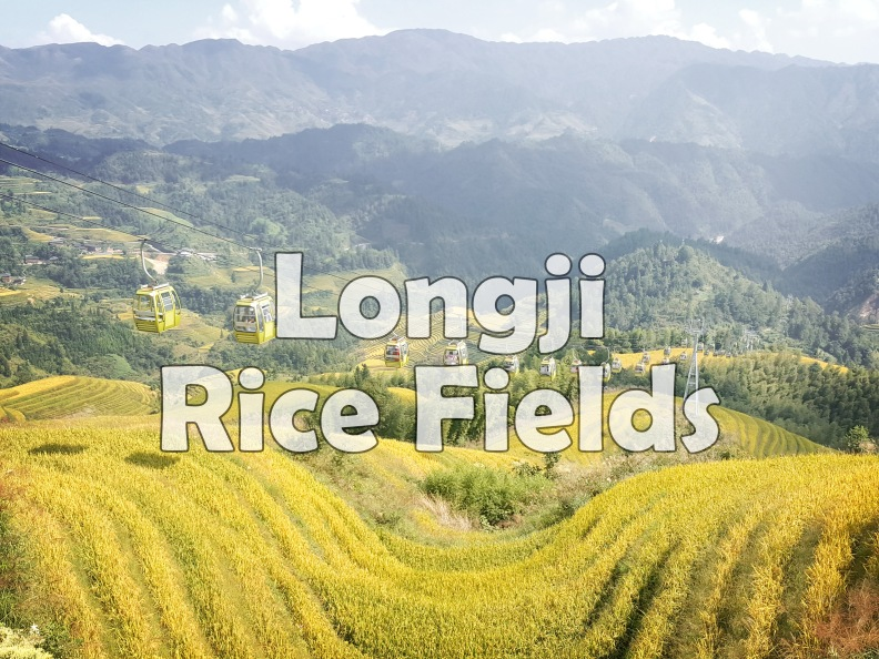 Longji Rice Fields.jpg